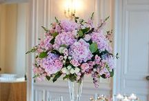 Beautiful pastels wedding / An elegant, classic style summer wedding with lots of personal touches. Colour palette of Pinks, Creams and Purples. Flowers to have a main focus of Hydrangeas.