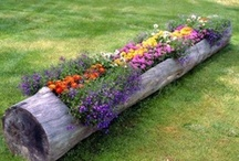 Garden Glory! / DIY Projects that can make your garden glorious!