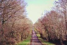 Trail - Running / La course à pied, un grand bol d'air Free me while running ;-)