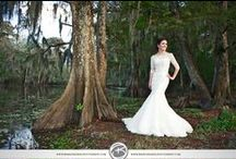 Bridals / Jungle Gardens is one of the most popular places to take bridal portraits, with over 170 acres of land to find your perfect shots.