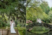 Weddings / Weddings in the Jungle Gardens on Avery Island