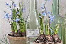 DEKO Frühling / Frische, frühlingshafte Dekorationen rund um Haus und Garten.
