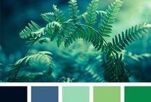 FARBE Color Palettes