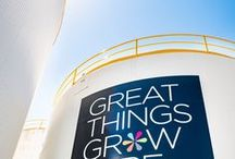 Great Things Grow Here / Connect with Hawke's Bay's most influential business network.