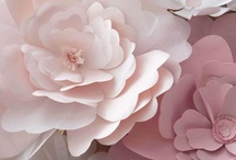 Pretty Papers / by Susan Teixeira