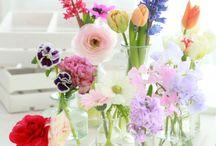 Flowers / Fleurs et bouquets