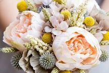 beautiful flowers and bouquets