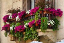 KAPI-PENCERE-BALKON (Door-Window-Balcony) (Porta-Finestra-Balcone) / Fotoğraf çekimleri bana ait. (All photographs are taken by me)