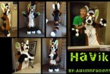 Fursuit Review