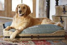 * Pet friendly Decor - / Pet ideas Pet accessories  pet beds pet rooms