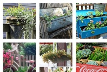 Planting Great Containers / by Suwapat