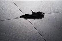 ArsRatio / Estremamente facile e versatile nelle operazioni di posa, di elevata finitura estetica, resistente ai carichi distribuiti e concentrati, si qualifica come la soluzione ideale per realizzare le pavimentazioni di spazi espositivi, mostre, stand fieristici, showroom, temporary shop, edifici storici e allestimenti museali (a tutela delle antiche superfici di pregio) e di qualsiasi altro ambiente in ambito terziario, commerciale e residenziale.