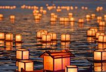 JAPANESE FESTIVAL / EVENT