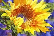 Sunflowers / by Sherry Schmidt