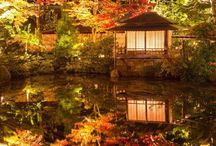 DREAM IN JAPAN / We would like you to share what you wanna do.go,see,feel,touch, whatever you dream in Japan!!!