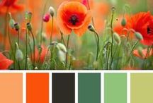 """Flora Color / One of our favorite websites is design-seeds.com. We are one among """"all those who love color"""". Jessica Colaluca does a wonderful job creating exciting color palettes. We want to share her interpretations of floral color on a dedicated board because the beauty of nature also serves as a source of inspiration for our designs."""