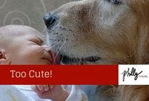 Too Cute Not To Pin! / Animals & Babies