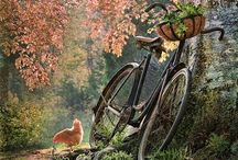 I love my bike / by Kellie Deatherage