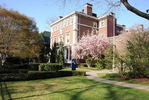 Brooklyn Campus / by St. Joseph's College, New York