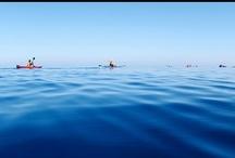 カヌー・カヤック Canoe/Kayak / あそびゅー!カヌー・カヤック http://www.asoview.com/canoer/