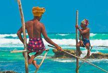 Sri Lanka / Sri Lanka trip July 2014