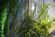 Design_ Natur. / Sustainable architecture, Sustainable energy, Biomimetics