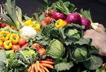 Gastronomía y Salud