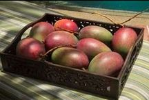 Mango Mania / It's Mango season, and there are so many ways to enjoy this delicious fruit.. let's explore