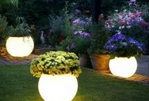 The garden spaces