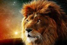 ❤️Leo like Me- Roar!❤️ / Horoscope  #Leo  / by Corina G