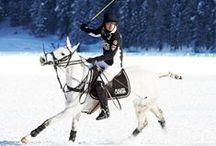 Swiss Polo