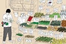 Food Illustrations / Illustrations from the Food section of The New York Times.