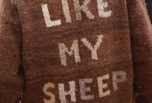 Sheep & Wool / Raising sheep for milk, meat- plus how to harvest, spin and craft  with wool.