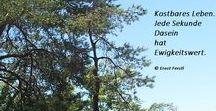 Mein Kalenderblatt / Sprüche Zitate Tag Zitat Mensch Leben Menschen Schicksal Freunde Liebe Hass Miteinander Kalender Jahr Gedicht
