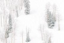 Winter**
