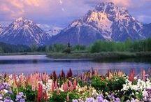 Awe Inspiring Nature