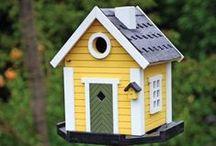 Bird House Contest!