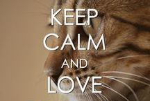 KEEP CALM (In the Memory of Diana) / by Carole Ccfb