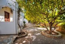 Lemon Tree Pefkos Apartments / Lemon Tree Pefkos Apartments are situated in the heart of the quaint resort of Pefkos, opposite Matina Pefkos Aparthotel and only 50 meters away from Pefkos main beach hidden by citrus groves. Your ideal Greek getaway accommodation.