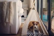 VKL Happy Camper's / Modern Pet Teepees by VintageKandyLiving @ etsy