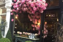 Flowers & Decorations