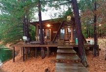 Cabins / Cabins: The Great Outdoors