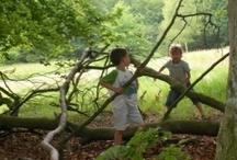 Kinderen, jongeren & de natuur / Kinderen, jongeren en de natuur. Het is een natuurlijke combinatie. Inspiratie om samen met kinderen de natuur te ontdekken. Ga voor pure natuurbeleving.