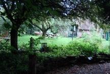 Natuur-uitjes / Lekker naar buiten, bio, eco en duurzaam op je blote voeten.....en mooie groene logeerplekken