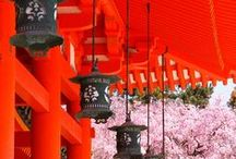 Travel - Japan / by Charlene Wolter