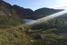 Eksingedalen / Valley in Norway.