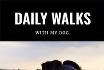 My walks with the dog / Walking my dog. (Een ode aan Saar)