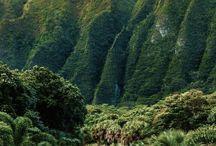 HAWAII / EMMI OCH SARAH SKA TILL HAWAII
