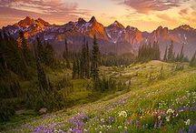 ~ Scenery & Beauty ~ / Beautiful and breathtaking! ♡