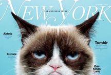 COVER IT / #cover #magazine / by Chiel van Rijn